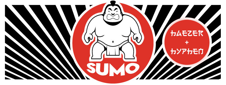 Sumo House Party at 20 Hurlingham Road Illovo
