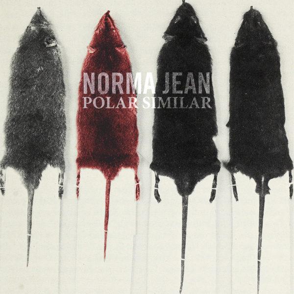 Polar Similar